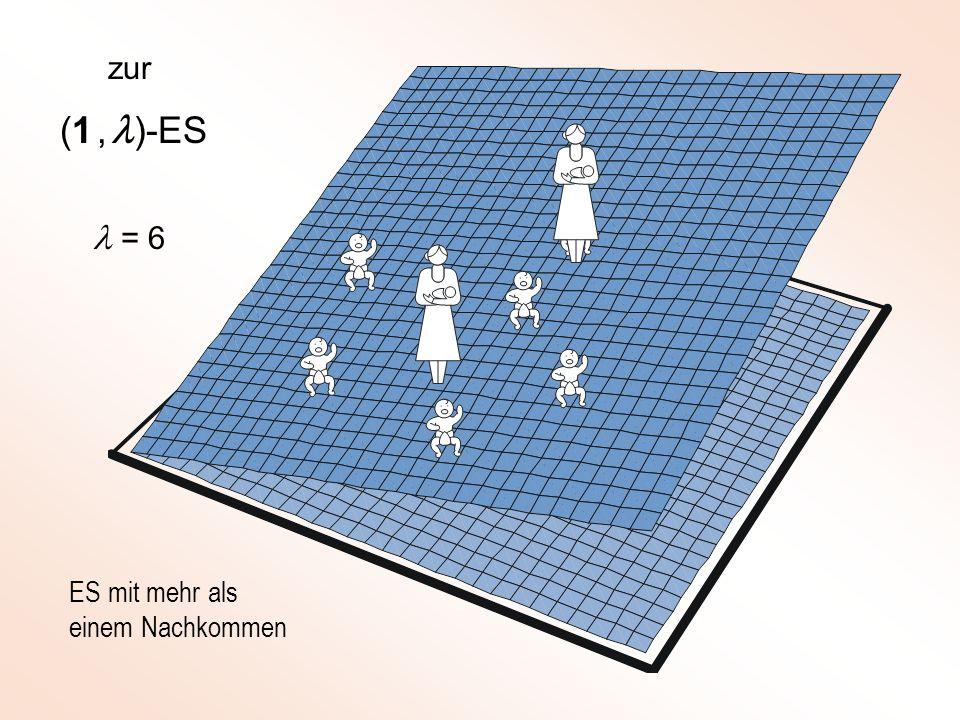 zur (1 , l)-ES l = 6 ES mit mehr als einem Nachkommen