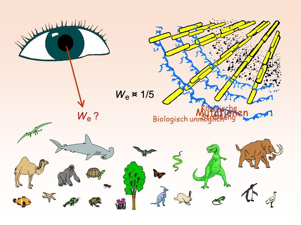 We > 1/5 We < 1/5 Mutationen We Kosmische Strahlung
