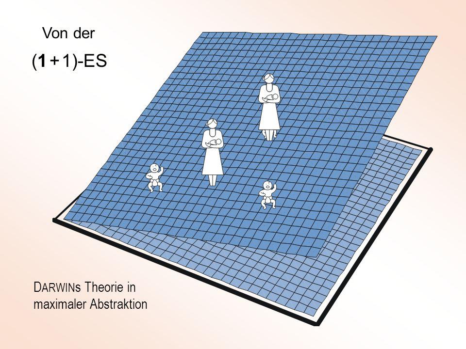 Von der (1 + 1)-ES DARWINs Theorie in maximaler Abstraktion