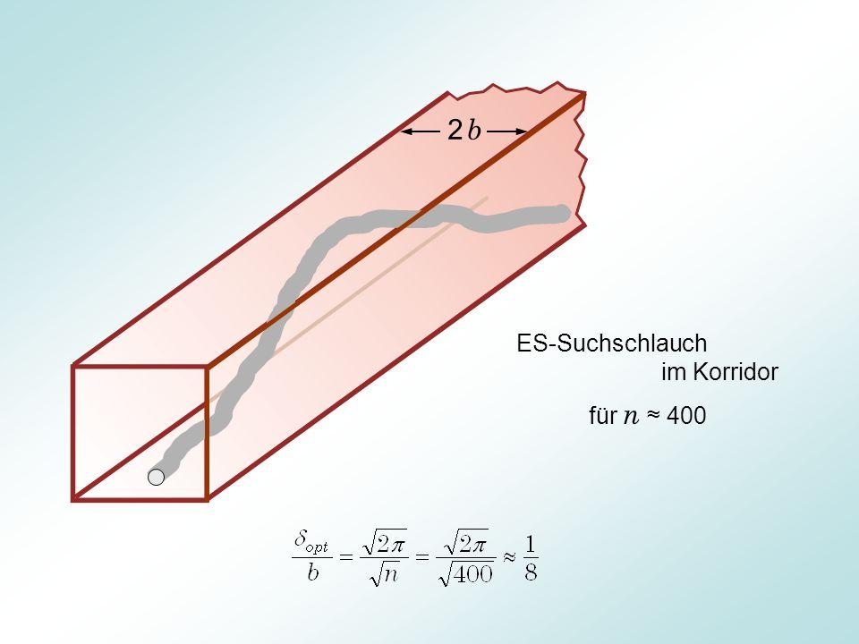 2 b ES-Suchschlauch im Korridor für n ≈ 400