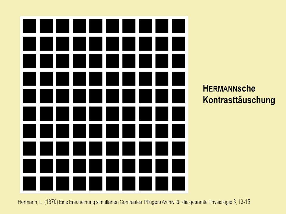 HERMANNsche Kontrasttäuschung