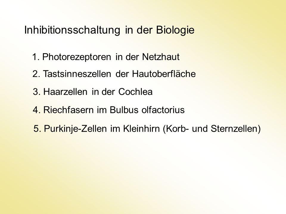 Inhibitionsschaltung in der Biologie