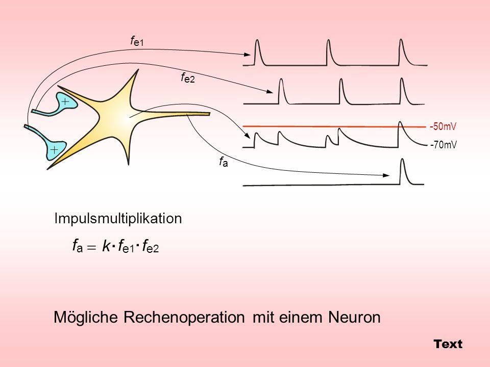 . . fa = k fe1 fe2 Mögliche Rechenoperation mit einem Neuron