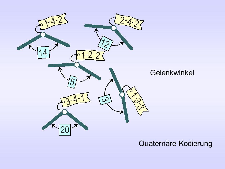 Gelenkwinkel Quaternäre Kodierung