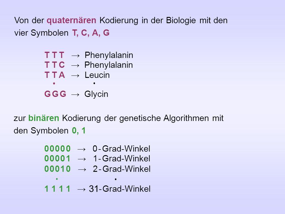 Von der quaternären Kodierung in der Biologie mit den vier Symbolen T, C, A, G