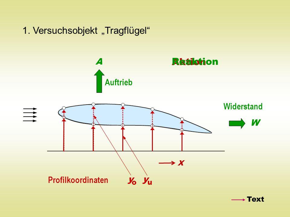 "1. Versuchsobjekt ""Tragflügel"