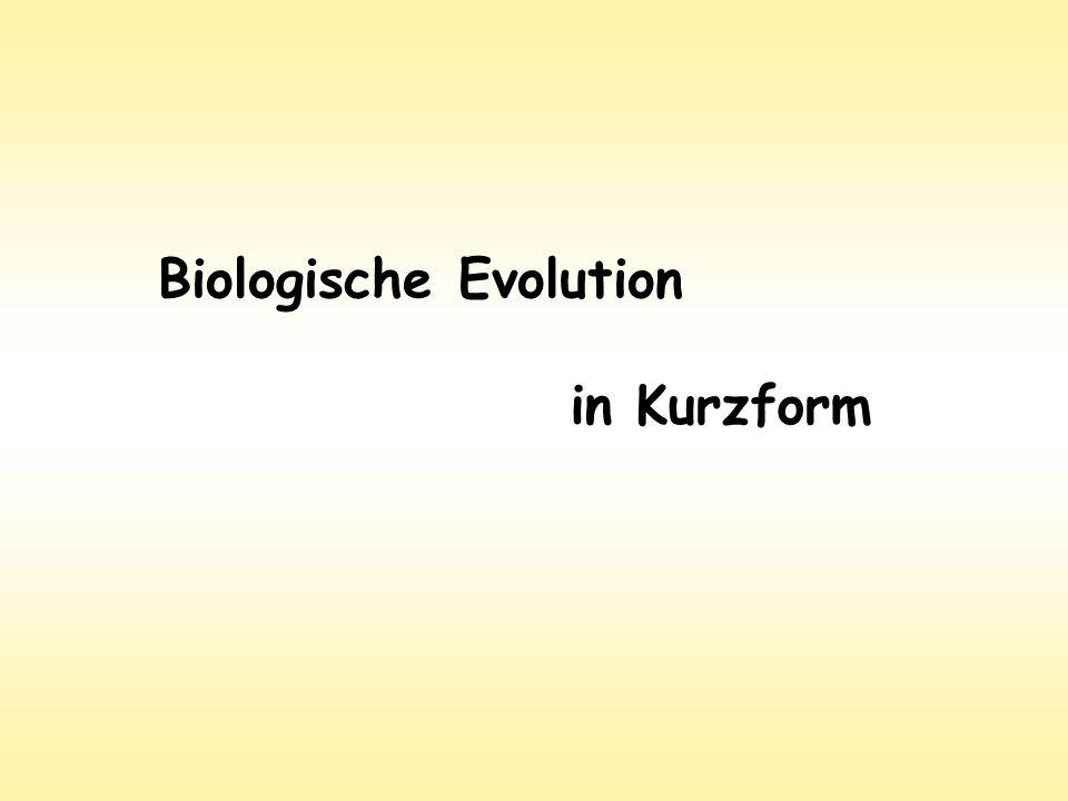 Biologische Evolution
