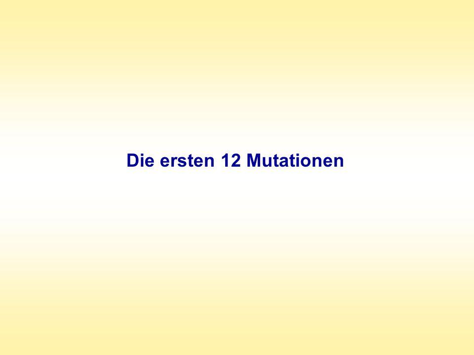 Die ersten 12 Mutationen