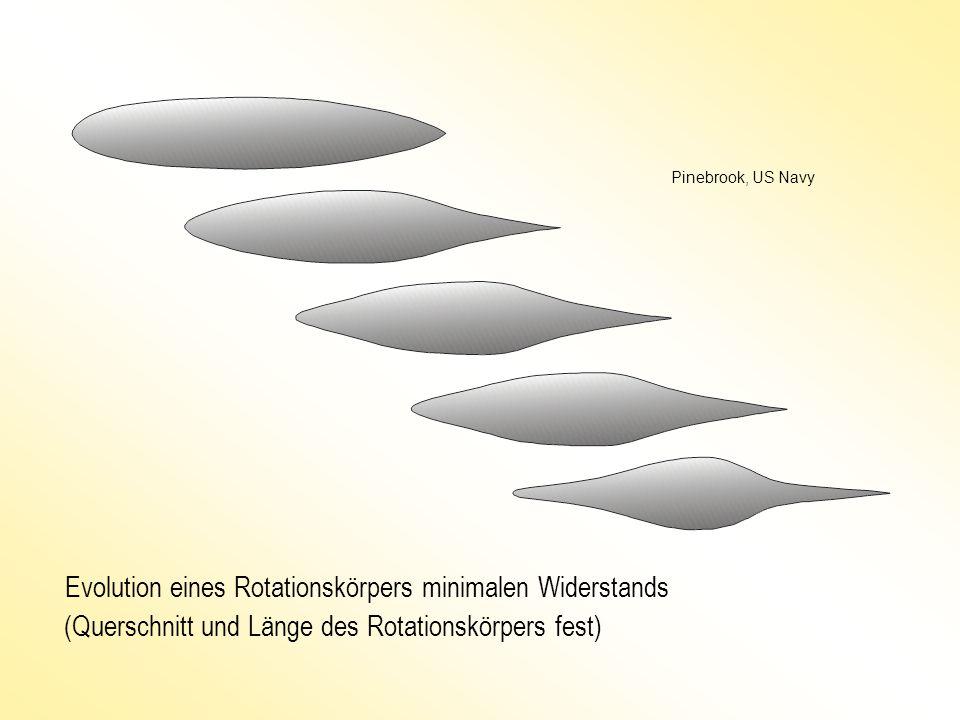 Evolution eines Rotationskörpers minimalen Widerstands