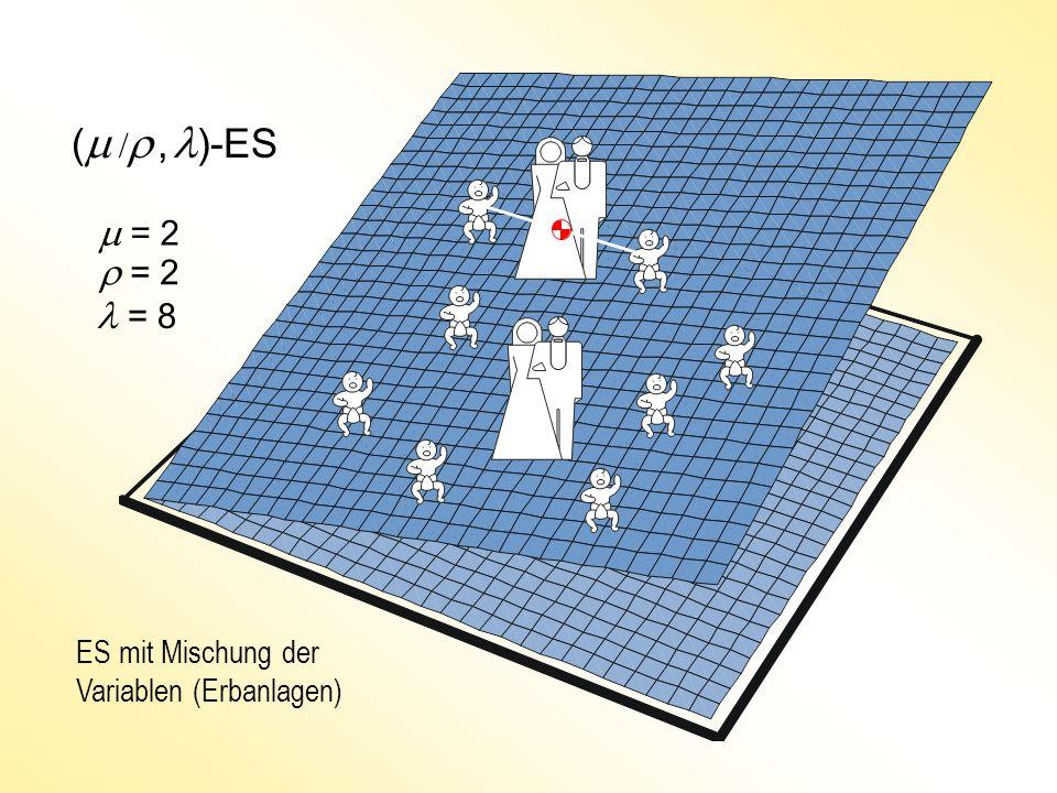 (m /r , l)-ES m = 2 r = 2 l = 8 ES mit Mischung der Variablen (Erbanlagen)