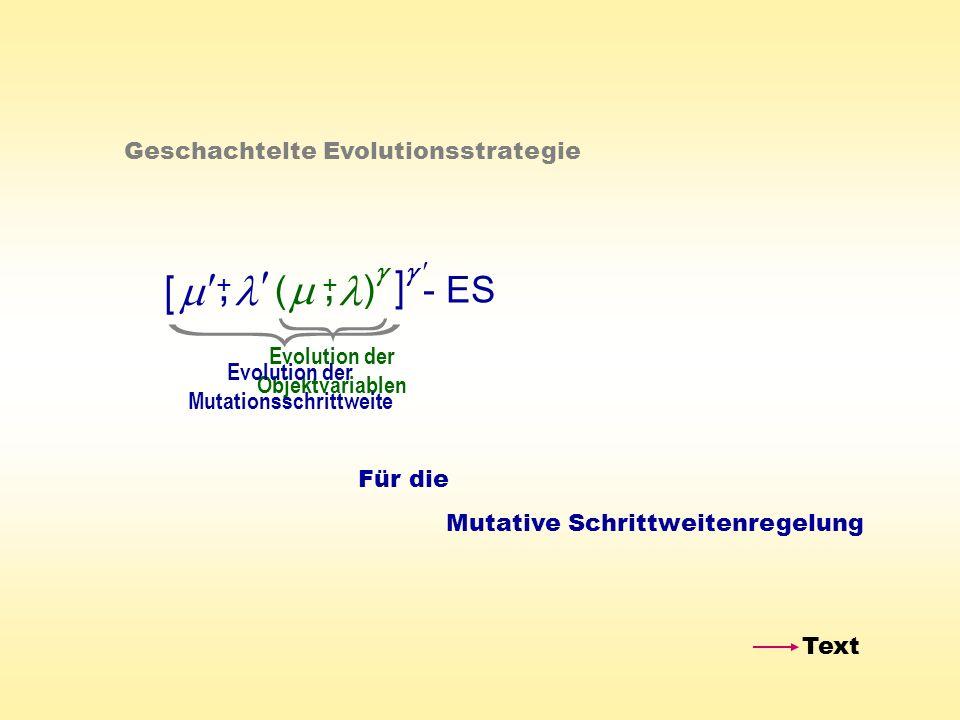 Evolution der Objektvariablen Evolution der Mutationsschrittweite