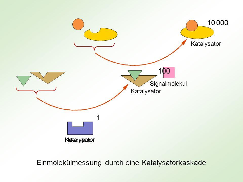 Einmolekülmessung durch eine Katalysatorkaskade