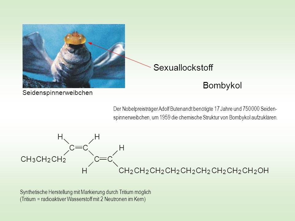 Sexuallockstoff Bombykol CH C OH H Seidenspinnerweibchen