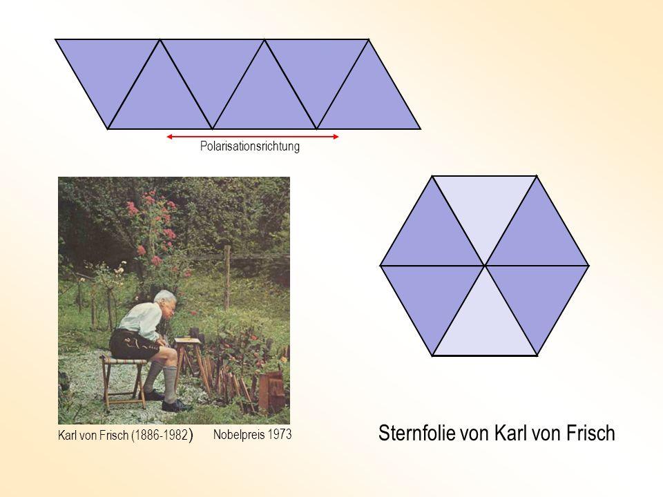 Sternfolie von Karl von Frisch