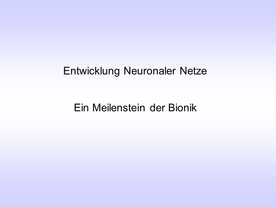 Entwicklung Neuronaler Netze