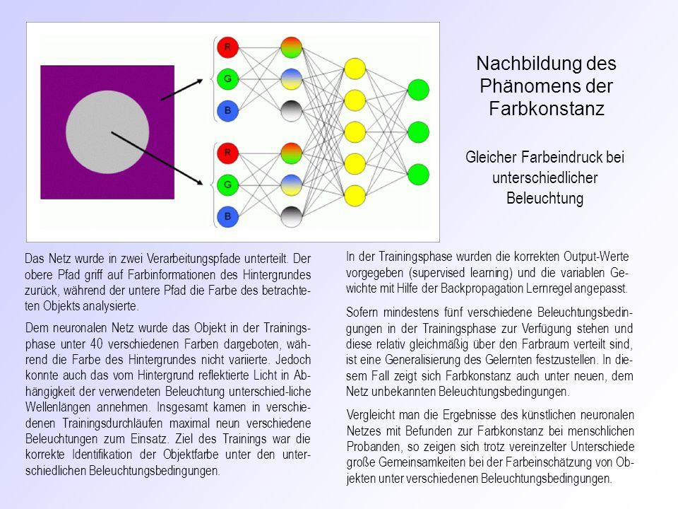 Nachbildung des Phänomens der Farbkonstanz
