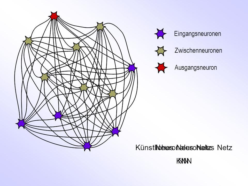 Künstliches Neuronales Netz