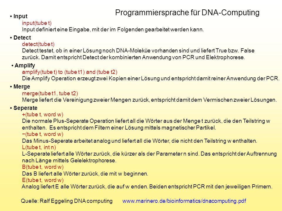Programmiersprache für DNA-Computing
