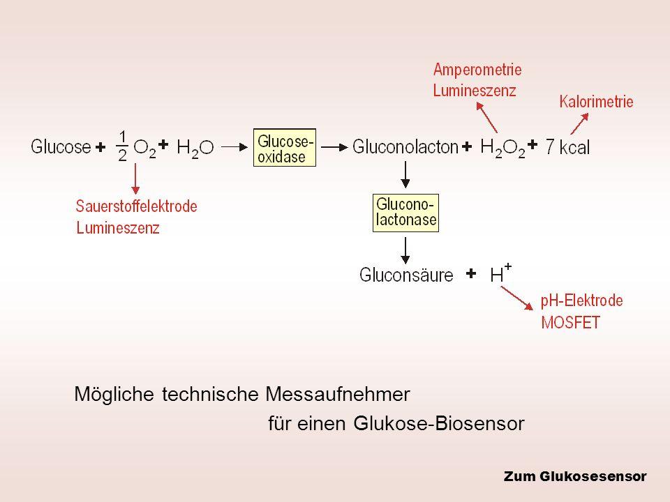 Mögliche technische Messaufnehmer für einen Glukose-Biosensor