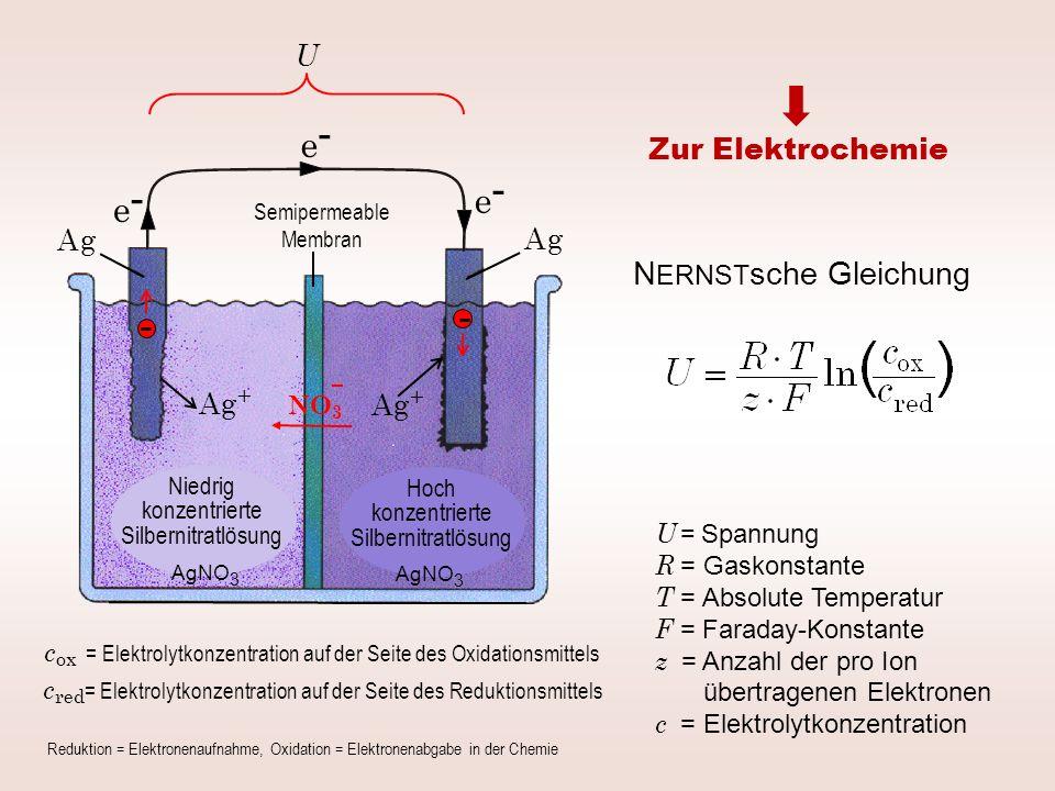e- e- e- NERNSTsche Gleichung U Zur Elektrochemie A g A g Ag+ Ag+ NO3
