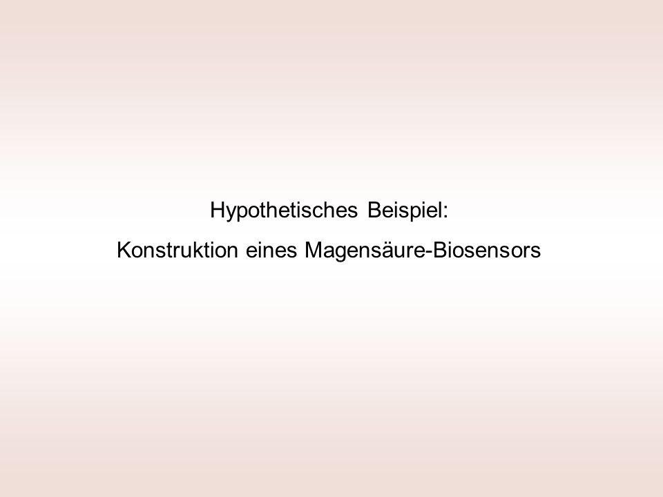 Hypothetisches Beispiel: Konstruktion eines Magensäure-Biosensors