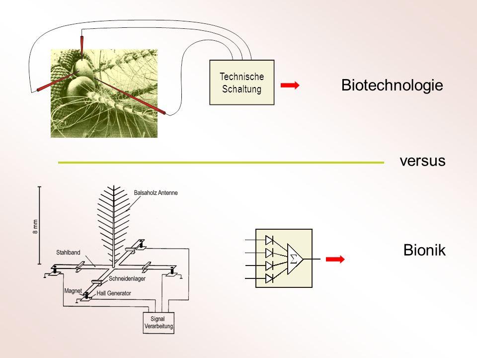 Technische Schaltung Biotechnologie versus Bionik