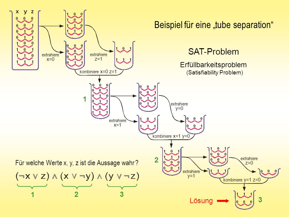 """Beispiel für eine """"tube separation"""