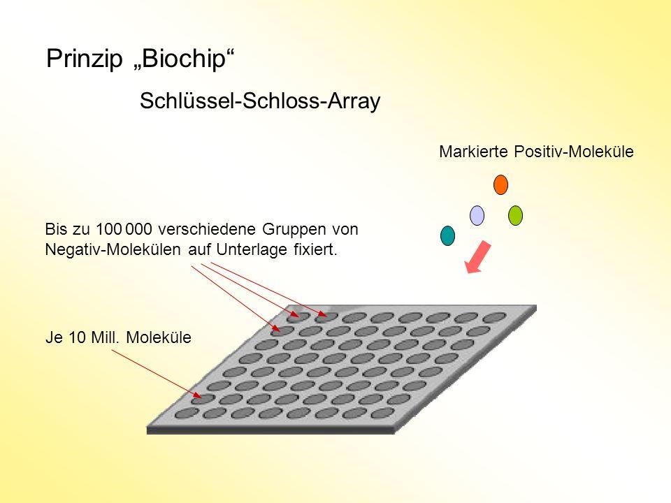 "Prinzip ""Biochip Schlüssel-Schloss-Array Markierte Positiv-Moleküle"