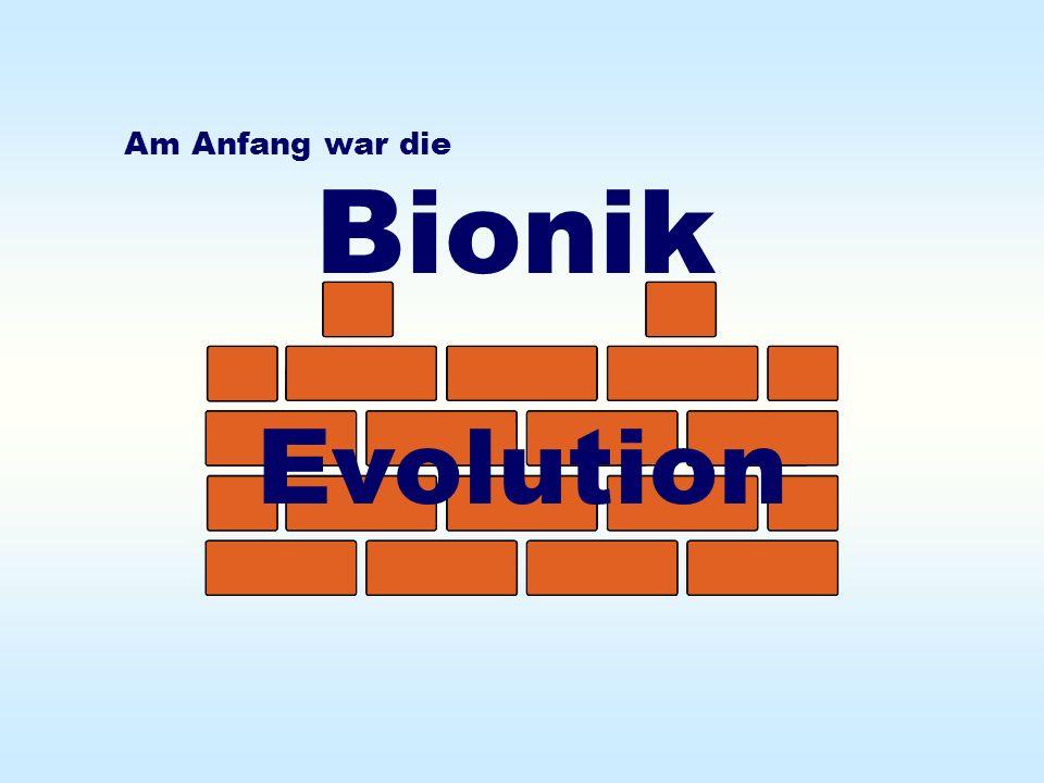Am Anfang war die Bionik Evolution