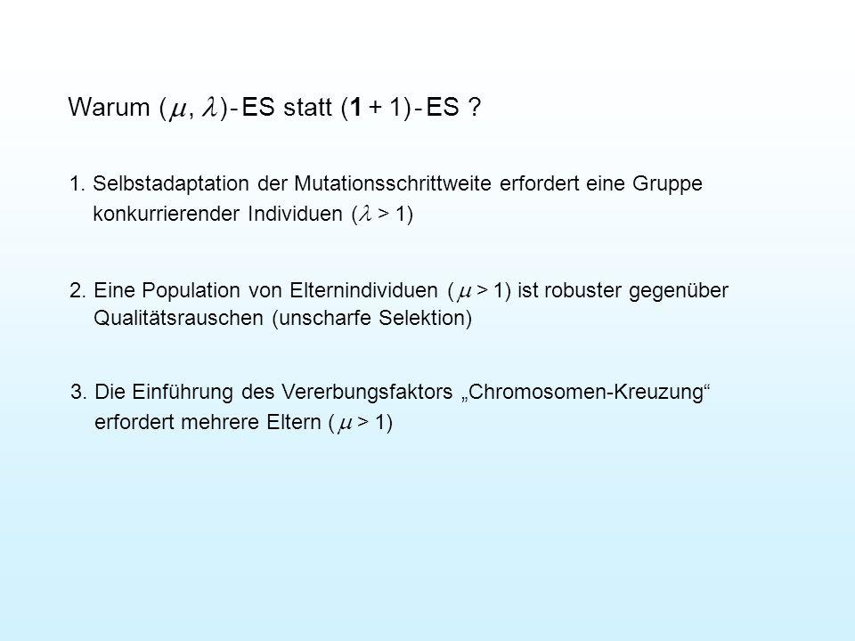 Warum ( m , l ) - ES statt (1 + 1) - ES