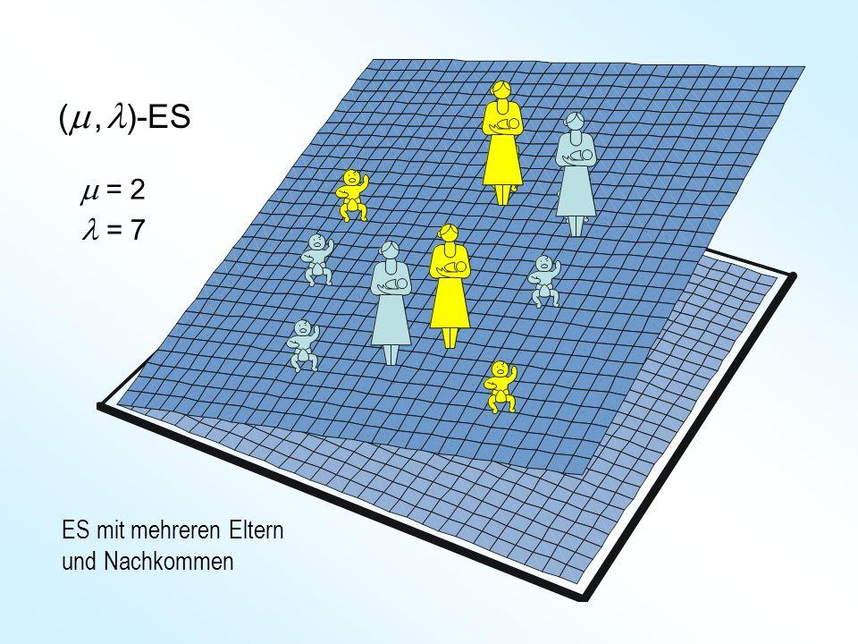 (m , l)-ES m = 2 l = 7 ES mit mehreren Eltern und Nachkommen