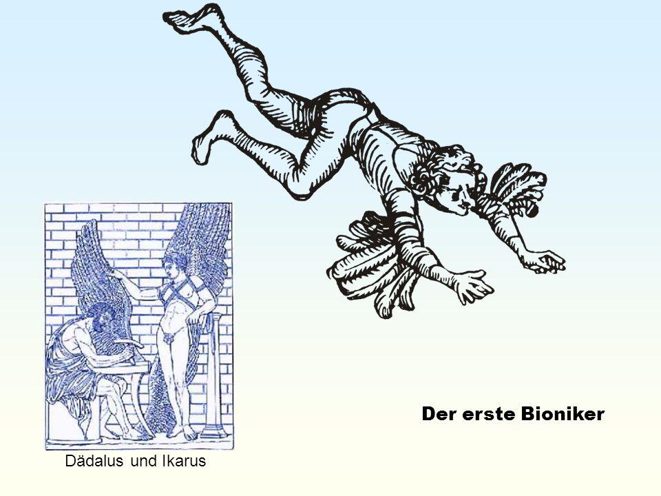 Dädalus und Ikarus Der erste Bioniker