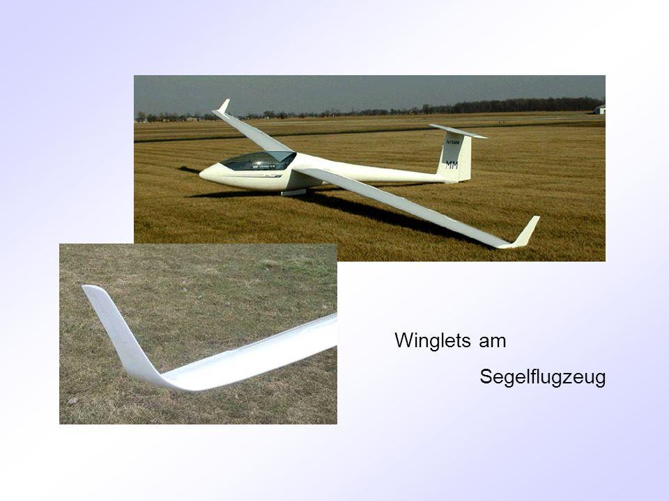 Winglets am Segelflugzeug