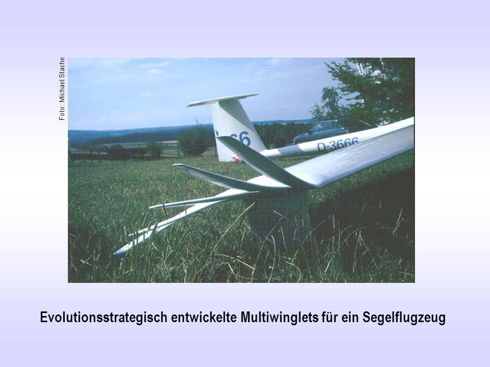 Evolutionsstrategisch entwickelte Multiwinglets für ein Segelflugzeug