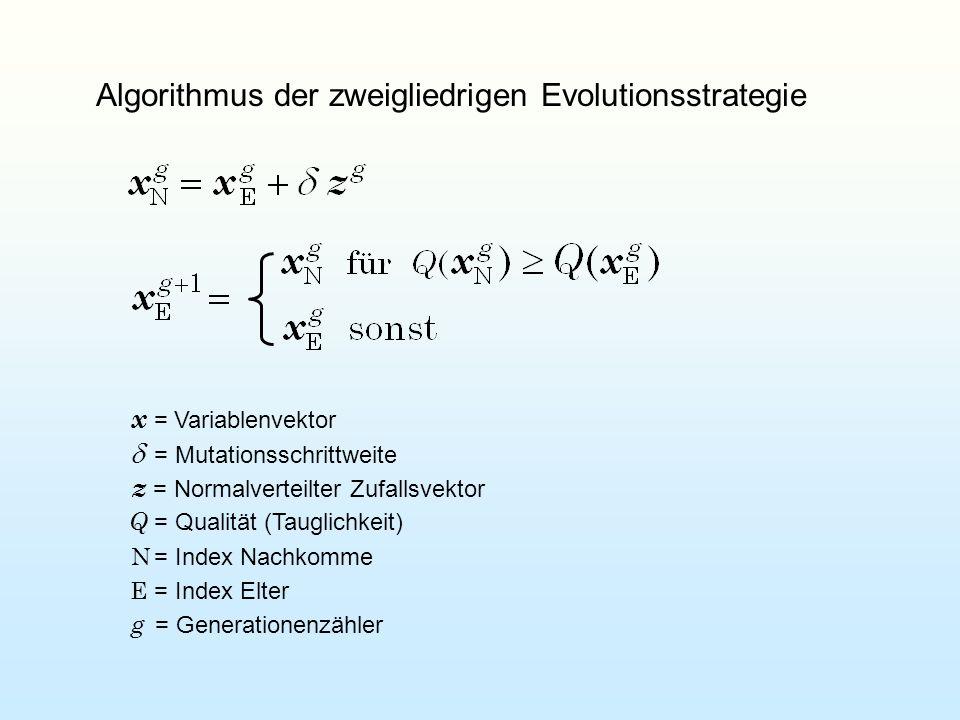 Algorithmus der zweigliedrigen Evolutionsstrategie