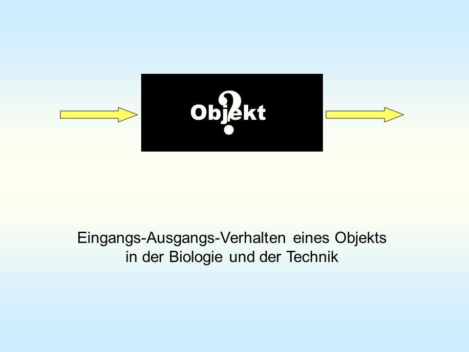 Objekt Eingangs-Ausgangs-Verhalten eines Objekts in der Biologie und der Technik