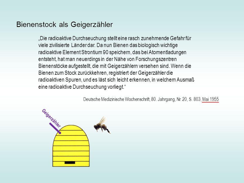 Bienenstock als Geigerzähler
