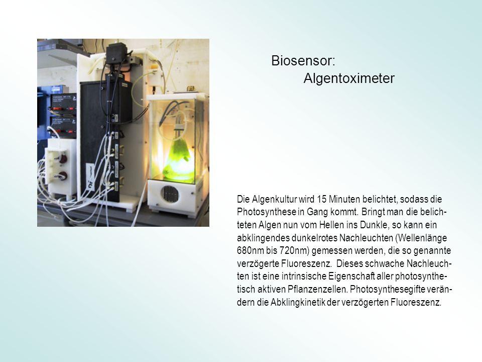 Biosensor: Algentoximeter