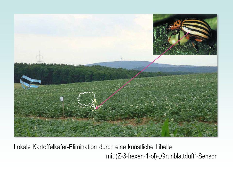 Lokale Kartoffelkäfer-Elimination durch eine künstliche Libelle