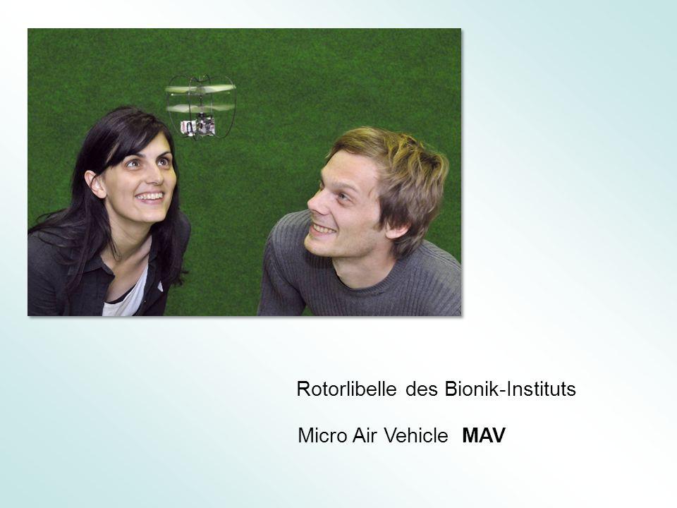 Rotorlibelle des Bionik-Instituts