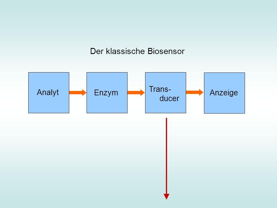 Der klassische Biosensor