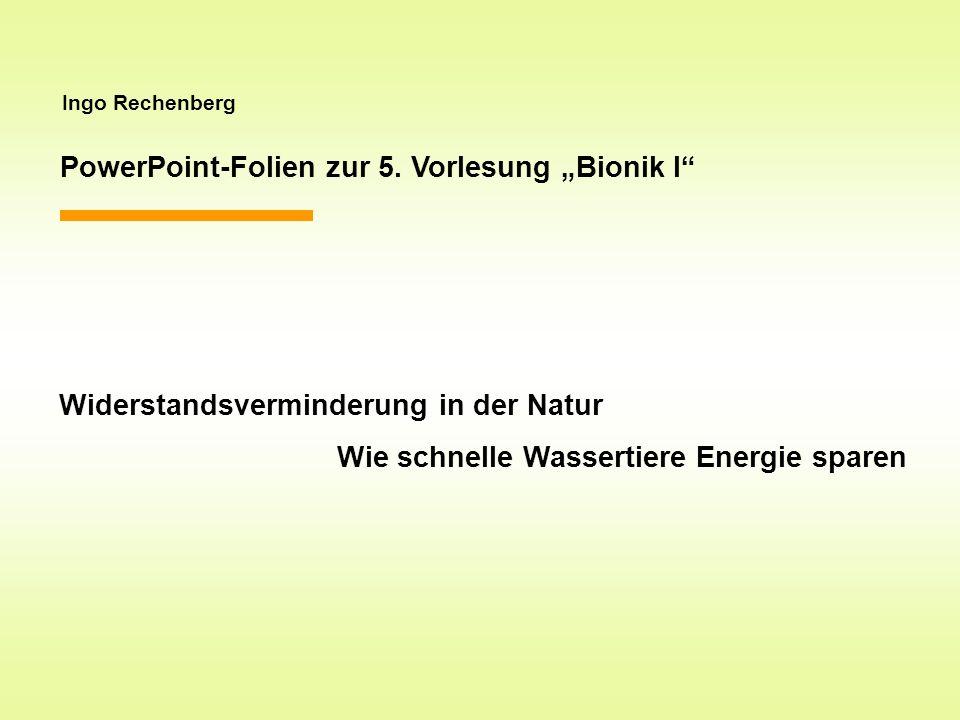 """PowerPoint-Folien zur 5. Vorlesung """"Bionik I"""