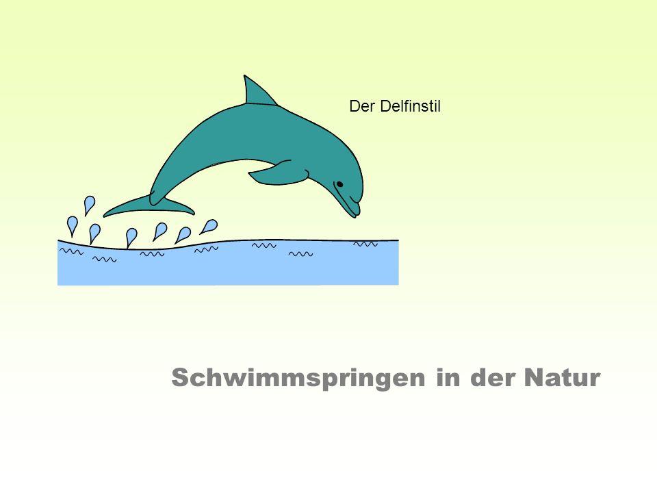 Schwimmspringen in der Natur