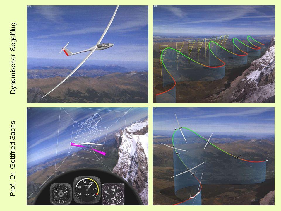 Dynamischer Segelflug