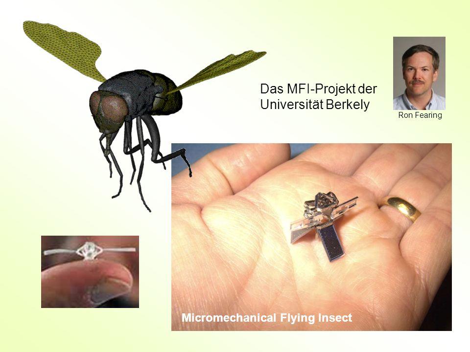 Das MFI-Projekt der Universität Berkely