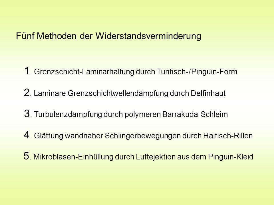 1. Grenzschicht-Laminarhaltung durch Tunfisch- / Pinguin-Form