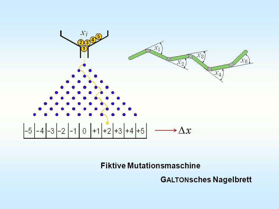 D x Fiktive Mutationsmaschine GALTONsches Nagelbrett
