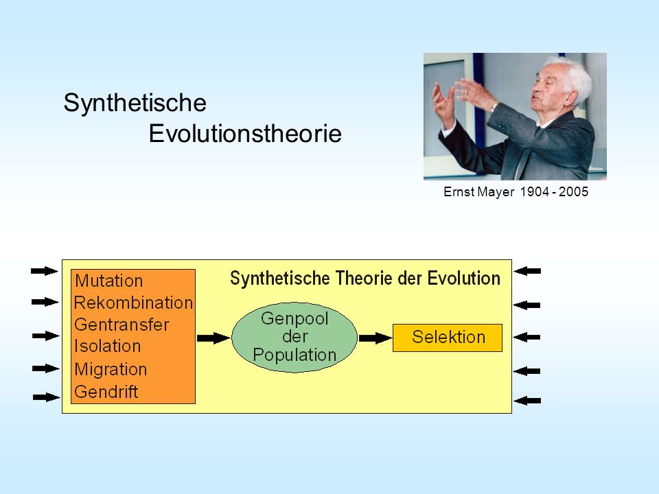 Synthetische Evolutionstheorie Ernst Mayer 1904 - 2005