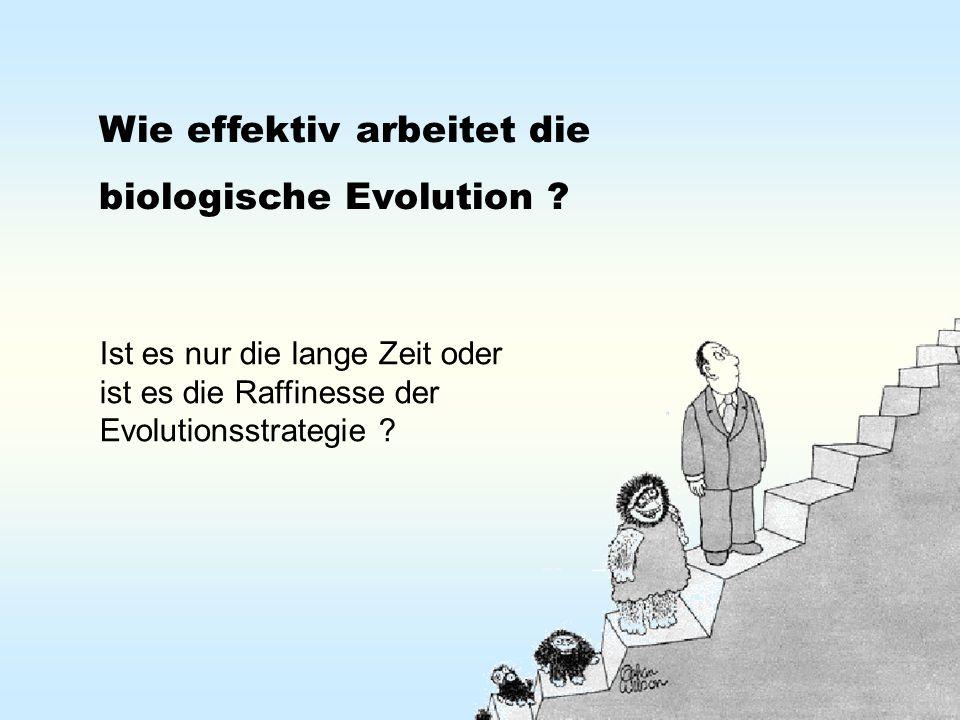 Wie effektiv arbeitet die biologische Evolution