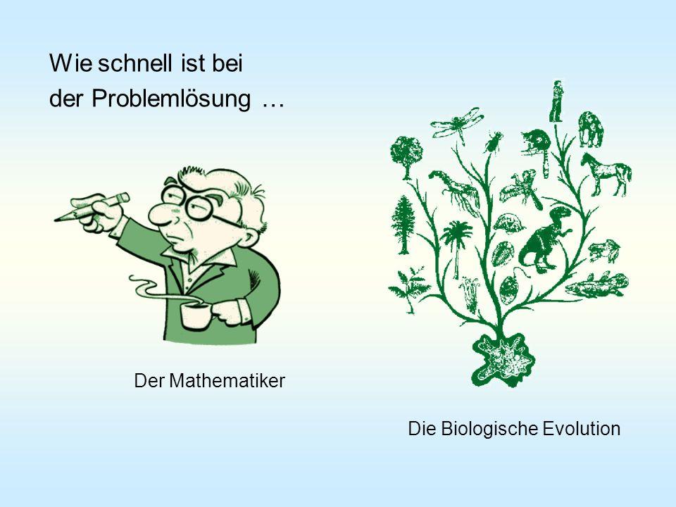 Wie schnell ist bei der Problemlösung … Der Mathematiker